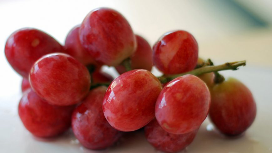 Wine Grapes Characteristics